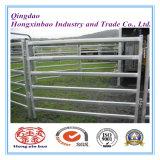 Tipo facilmente montato cavallo di N del tubo/rete fissa galvanizzati dell'azienda agricola del comitato iarda dei bovini/ovini/mucca