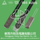 Termóstato para la batería recargable