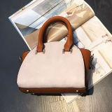 베스트셀러 제품 색깔 충돌 숙녀 Sy8539를 위한 우아한 운반물 어깨에 매는 가방 디자이너 핸드백