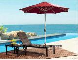 屋外の/Rattan/庭/テラスの家具のセットされるプラスチック木製のラウンジチェア及び側面表(HS 3022C&HS 3022ET)