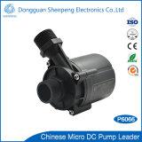 Pompa di toletta astuta superiore 24V con flusso 20L/Min della testa 13m