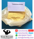 고품질 스테로이드 처리되지 않는 분말 Anavar의 공급 종류