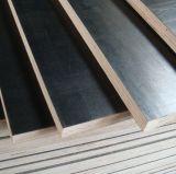 La película de la base del álamo hizo frente a la madera contrachapada con precio competitivo