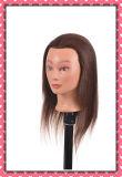 Testa 24inches di addestramento dei capelli umani del commercio all'ingrosso 100% per il banco di bellezza
