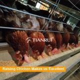 鶏のケージを上げる自動家禽の農機具か層