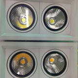 더 나은 Design 2*20W High Power COB LED Bean Gall Light/LED Ceiling Light