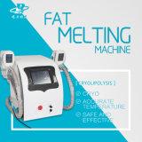 Las celulitis de congelación de Cryo reducen la carrocería que adelgaza la máquina
