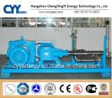 Grande bomba de pistão do CO2 de GNL do argônio do nitrogênio do oxigênio líquido do fluxo