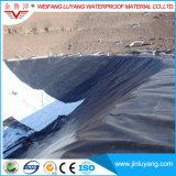 HDPE Geomembane высокого качества для вкладыша фермы водохозяйства