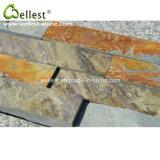 Évaluer un panneau de mur en pierre rouillé d'ardoise de surface normale de champignon de couche