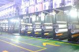 Filato di poliestere in 30d/18f e in 30d/24f luminosi per la fabbricazione della sciarpa