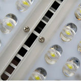 옥외 정연한 정원 점화 (TFH304)를 위한 80W/100W/150W/200W LED 투광램프