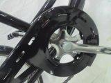 2015 nuevo diseño de 24 '' de acero triciclo para adultos