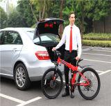 電気バイクモーター240W 72VのEのバイクの電気自転車