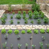 雑草防除の膜ファブリック