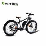 Bici eléctrica de Moutain de la rueda gorda con el motor inestable