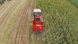 Cheio-Alimentar a maquinaria da ceifeira de milho