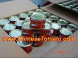 Pasta de tomate enlatada (en lata pasta de tomate, 70 g, 210 g, 400 g) de China