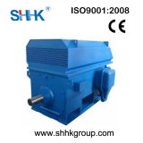 6kv 10kv Yrkk IC611 Slip Ring Induction Motor 185-2000kw