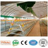 Cage de poulet de couche de ferme avicole de technologie de Poul petite (galvanisation chaude)