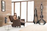 Cadeira moderna do lazer da mobília da sala de visitas (791)