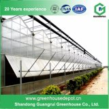 Chine Hot Sale Greenhouse Fabricant Commercial Hydroponics PC Sheet Greenhouse