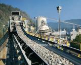 Трансмиссионный ремень больших и большого количества Materials/конвейерная Удара-Resistant