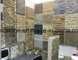 steen Hhsc10X40-005 van de Cultuur van de Steen van het Kwartsiet van 10*40cm de Witte Slanke