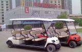 Großhandel 8 Sitz Elektrisch Sightseeing Auto