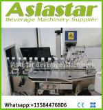 Maquinaria automática padrão da planta de engarrafamento da água mineral do Ce