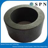 Ferrite permanente anéis Multipole aglomerados do ímã da imprensa molhada para os motores da indústria