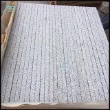 عمليّة بيع حارّ رماديّ حجارة [غ603] صقل صوّان مع يلتهب/لأنّ لون/يرصف/[كونترتوب]
