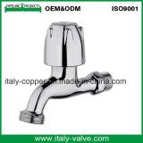 カスタマイズされた品質磨く真鍮水蛇口(AV2063)