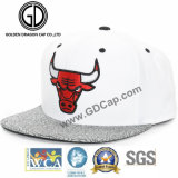 2017 tampão liso do Snapback do chapéu de basebol de Hip-Hop do bordado novo da era 3D do estilo