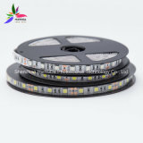 Striscia del chip 60LEDs 14.4W DC12V LED di colore verde IP20 SMD5050 di luminosità alta