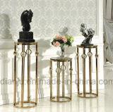 Soporte especial de la planta del acero inoxidable de los muebles del hotel (DF1003#)