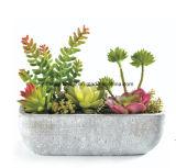 Piante artificiali della plastica delle piante della decorazione domestica
