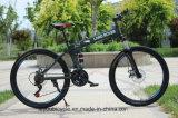 Bike горы дороги хорошего качества складывая от Китая (ly-a-35)