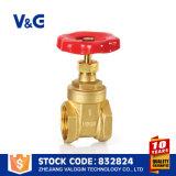 Válvula de porta inteira da venda de China (VG-B10302)