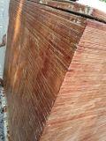 Colle du contre-plaqué WBP de construction de faisceau de peuplier/bois dur