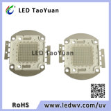 UV LED 375nm 395nm 405nm 100W 의 고성능 UV LED