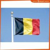 Su ordinazione impermeabilizzare e modello no. della bandiera nazionale del Ritaglio della bandiera nazionale di Sunproof: NF-067