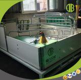 Het Werpen van de Varkensfokkerij van China van de Kooi van het proefkonijn de Apparatuur van de Varkensfokkerij van het Krat