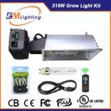 고품질 315W LED는 식물 성장을%s 원격 제어 가벼운 장비 지원 IR를 증가한다