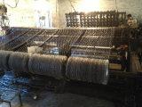 Sgs-Fabrik Belüftung-überzogene sechseckige Draht-Filetarbeit