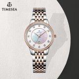 Nieuw Horloge 71043 van de Dames van het Roestvrij staal van de Greep van de Juwelen van het Merk van het Horloge van de Luxe Zilverachtig