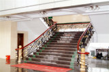 Haohan modificó la barandilla de acero galvanizada australiana europea elegante 1 de la escalera para requisitos particulares