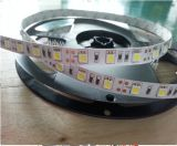 Flexible wasserdichte IP65 DC12V 24V 300 LED Streifen-Lichter 5m/Roll