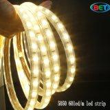 AC110V/230V DC12V/24V 5050 iluminación de tira de 5630 60LED LED