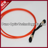 Red MPO Fiber Optic CableOM3, macho fixado 40G MPO Tipo de cabo - B Polaridade